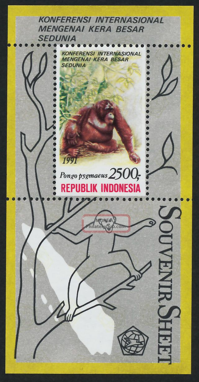 Indonesia 1481a Orangutan Asia photo