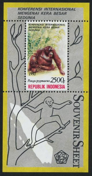 Indonesia 1481a Orangutan photo