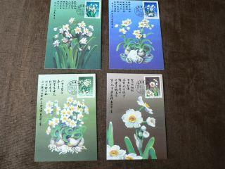 4 X 1990 China Maximum Cards: Flowers,  Narcissus photo