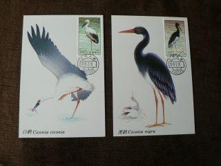 2 X 1992 China Maximum Cards: Storks,  Birds photo