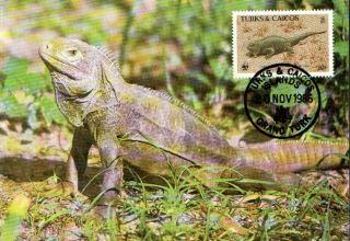 (70539) Maxicard - Turks Caicos - Iguana - 1986 photo