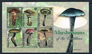 Antigua 2011 Mushrooms 6v Sheet photo
