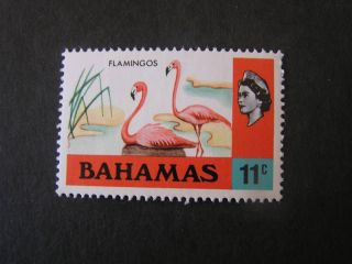 Bahamas,  Scott 322,  11c.  Value Qe2 1971 Issue photo
