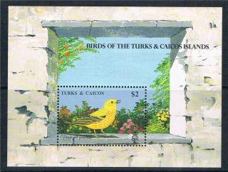 Turks & Caicos Is 1990 Birds Ms Sg 1018a photo