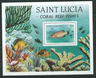 St.  Lucia Sgms650 1983 Coral Reef Fish photo