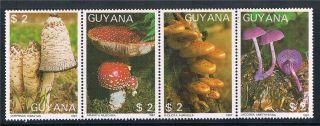 Guyana 1988 Mushrooms 4v Strip 1864 photo