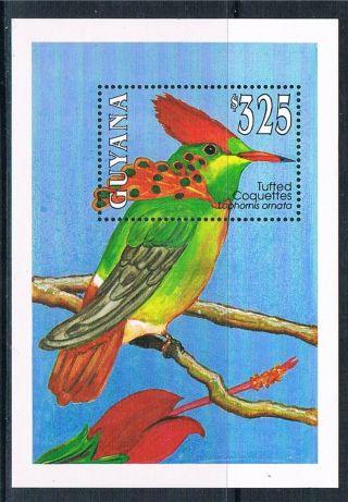 Guyana 1993 Birds Of Guyana Ms Sg 3497 photo