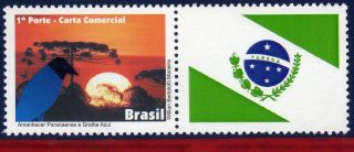 11 - 45 - 4 Brazil 2011 - Dawn Parana And Blue Jackdaw,  Birds,  Flag,  Personalized photo