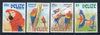 Belize 2003 Scarlet Macaw Sg 1304/7 photo