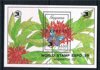 Guyana 1989 Butterflies Express Sg Ems 21 photo