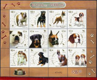 2567 Mexico 2007 - Breeds Of Dogs,  Animals & Fauna,  Souvenir Sheet photo