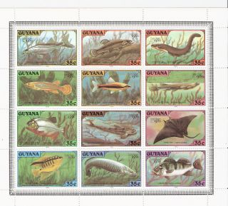 Guyana 1980 Fish For London Intl.  Stamp Expo.  Mini - Sheet (sc 317) photo