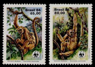 Brazil 1926 - 7 Animals,  Monkeys,  Mother,  Baby,  Wwf photo