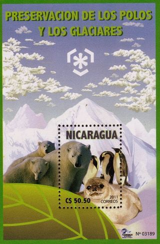 Nicaragua Preservation Of Polar Regions And Glaciers Sc 2519 2011 photo