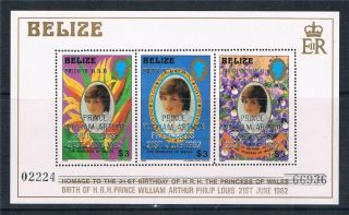 Belize 1982 Birth Of Prince William Sg Ms 713 photo