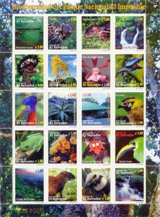 El Salvador 2000 Sc 1538 El Imposible Natl Park 20 Stamp Sheet,  Fauna,  Flora photo