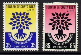 Costa Rica C290 - 1 World Refugee Year,  Oak Tree photo