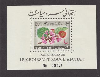 Afghanistan C28 Footnote Souvenir Sheet photo