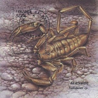 1994 Tanzania Souvenir Sheet Insect Arachnid Desert Animals Poison Scorpion Cto photo