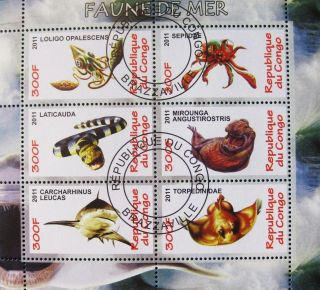 2011 Republic Of Congo Postage Mini - Sheet Of 6 Marine Sealife Nature Fish Cto photo