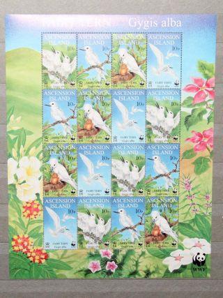 1999 Ascension Island Wwf Birds Fairy Tern Mini Sheet. photo