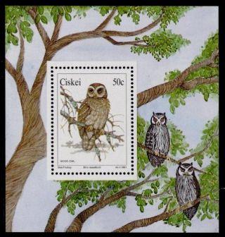 Ciskei 166a Owls photo