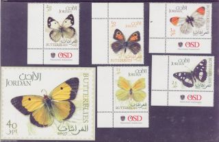 [jorbut07] Butterflies,  Insects,  Moths,  Complete,  Sheet,  Imperf,  Jordan,  2007 photo