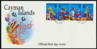 Cayman Islands 676a - D Fdc Marine Life,  Fish,  Coral photo