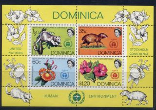 Dominica 340a Animals,  Flowers photo