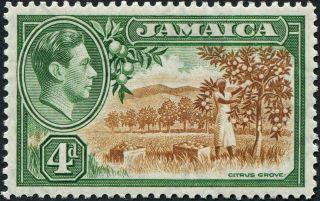 Jamaica 1938 (kgvi) 4d Brown And Green Sg127 Cv £1.  00 Mh P&p photo