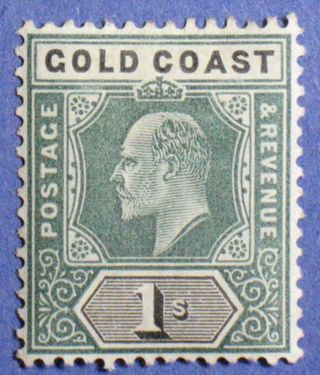 1902 Gold Coast 1s Scott 44 S.  G.  44 Cs01034 photo