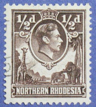 1951 Northern Rhodesia 1/2d Scott 26 S.  G.  26 Cs01271 photo
