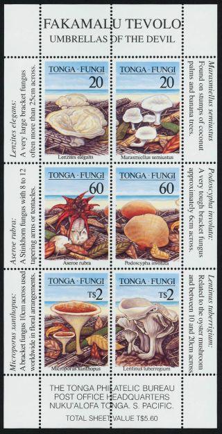 Tonga 979c Specimen O/p Mushrooms,  Fungi photo