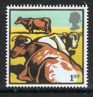 Dairy Shorton Cattle Illustrated On 2005 British Stamp - Nh photo