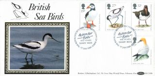17 January 1989 Birds Rspb Benham Blcs 38b First Day Cover Rspb Sandy Shs photo