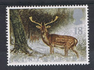 Fallow Dear In Scottish Forest Illustrated On 1992 British Stamp - Nh photo