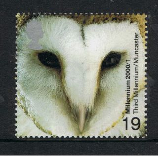 Barn Owl Illustrated On 2000 Millennium British Stamp - Nh photo