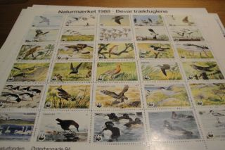 Danish World Wild Foundation Charity Stamp - 1988 - Complete.  Very Unique & Rare photo