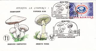 (22520) Romania Fdc - Mushrooms / Fungus 1993 photo