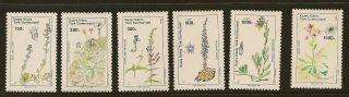 Turkish Cyprus : 1990 Plants Sg 293 - 8 Unmounted photo