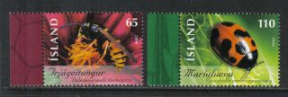 Iceland 2006 Local Insects - - Attractive Topical (1089 - 90) photo