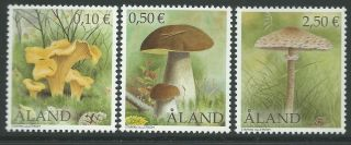 Finland Aland 2003 - Nature Flora Plants Mushrooms - Sc 194,  7,  0 photo