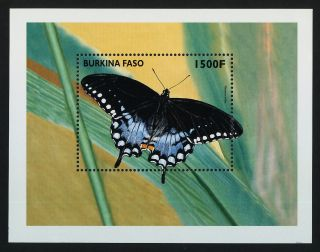 Burkina Faso 1112 Butterfly photo