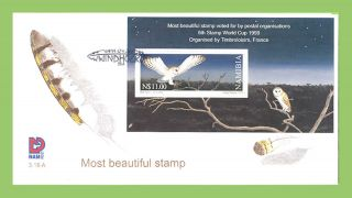 Namibia 1999 World Most Stamp,  Owl Miniature Sheet First Day Cover photo