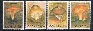 Zambia 1984 Fungi Sg 420/3 photo