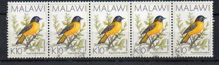 "Malawi 1988 K10 ""starred Robin"" Fine Strip Of Five photo"