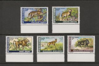Dahomey 252 - 256 Vf - 1969 5fr To 90fr Animals Pendjari Reservation photo