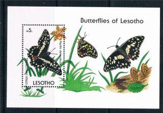 Lesotho 1990 Butterflies Ms Sg 957 photo