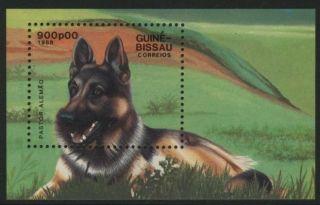 Guine Bissau 749 Dog photo
