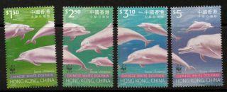 Hong Kong Sg995/8 1999 Hump - Back Dolphin photo